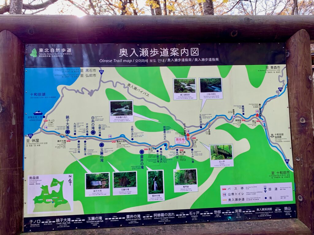 奥入瀬歩道の案内地図