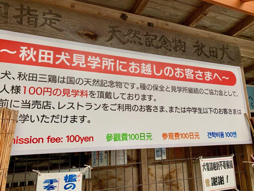 田沢湖レストハウスの秋田犬見学所