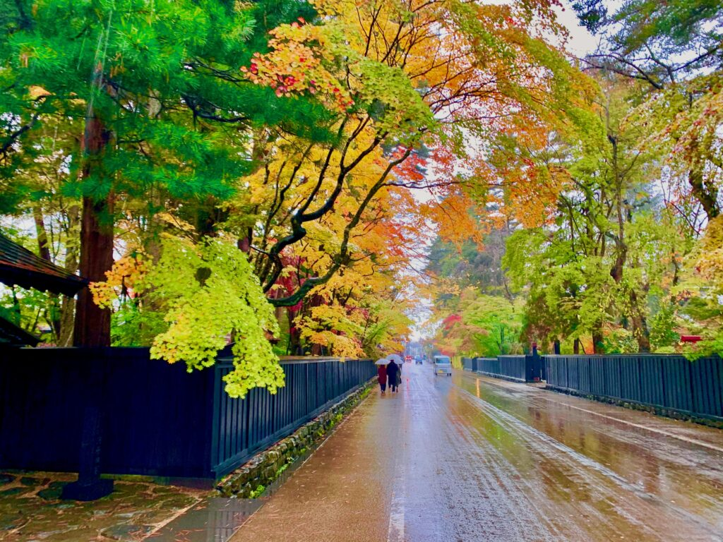 角館の武家屋敷通りの紅葉