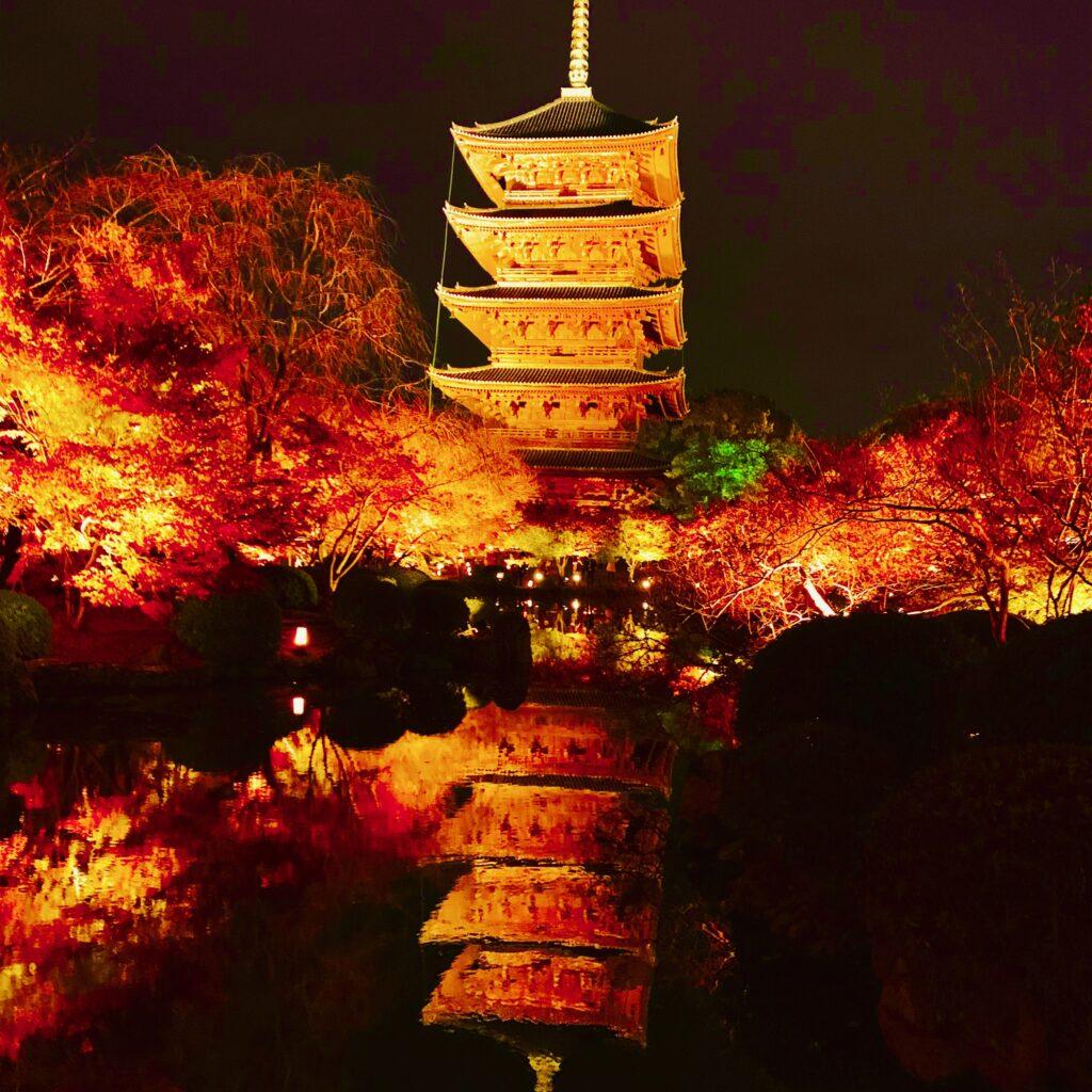東寺の五重塔と紅葉のライトアップ