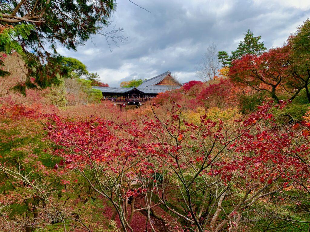 洗玉澗の紅葉と通天橋