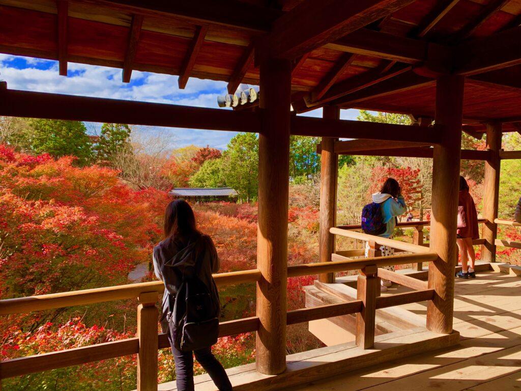 洗玉澗にかかる通天橋から眺める東福寺の紅葉