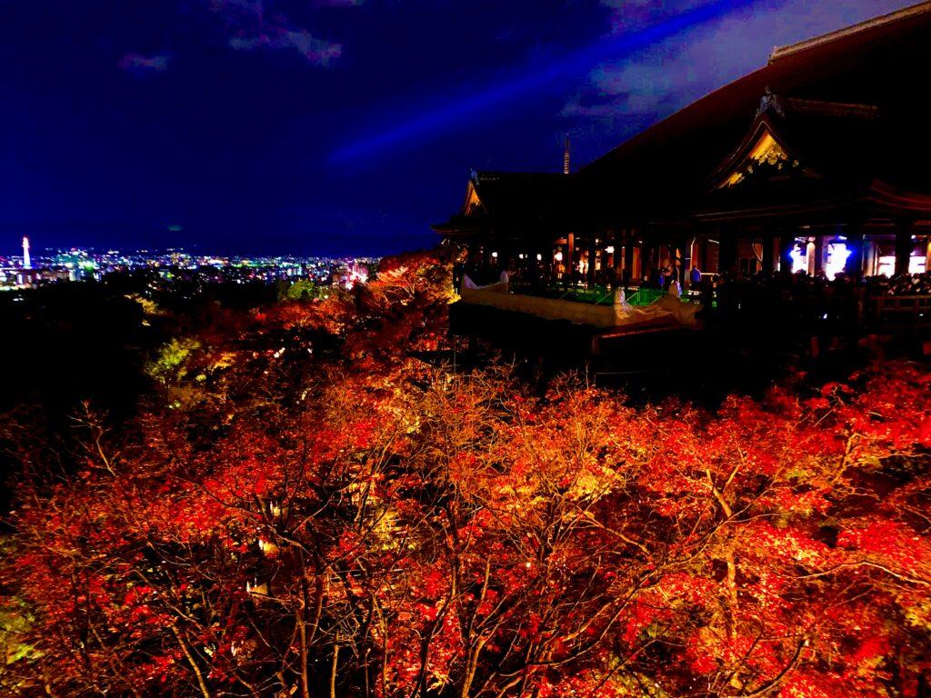 奥之院から撮影した清水の舞台と紅葉のライトアップ