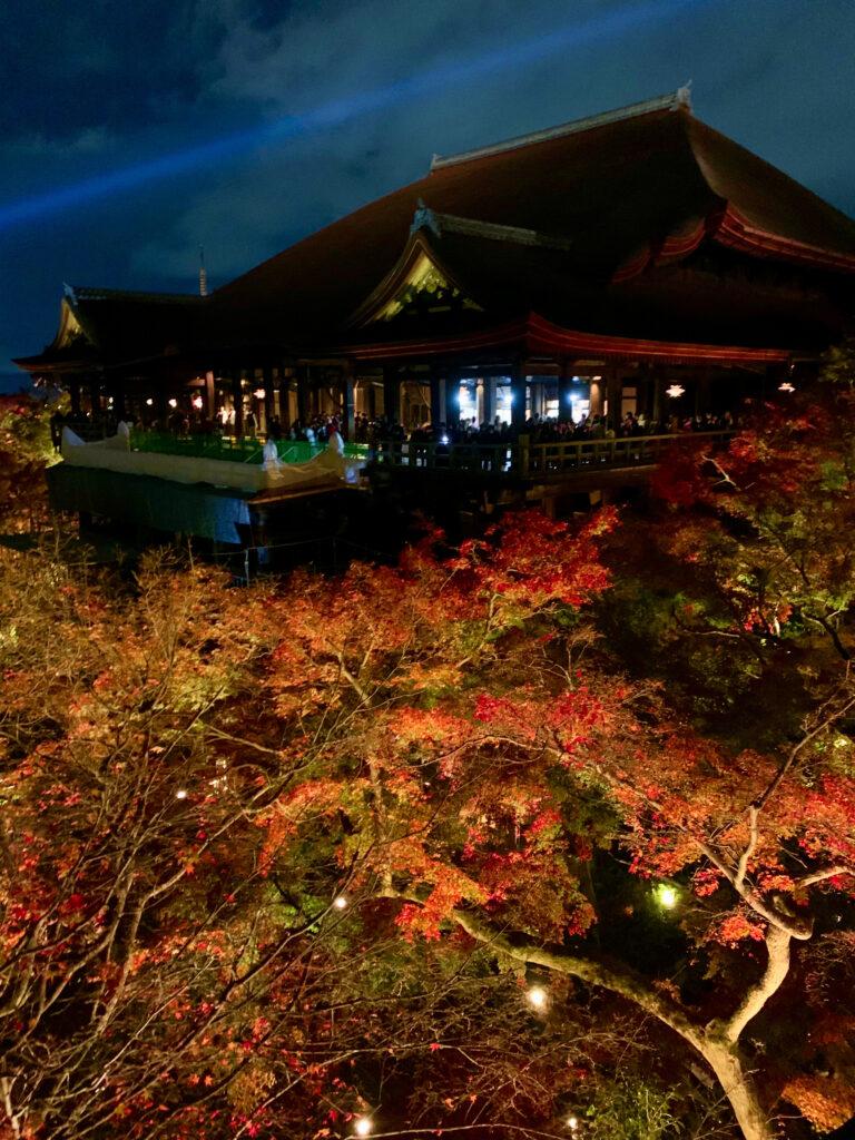 奥之院から見る清水の舞台と紅葉