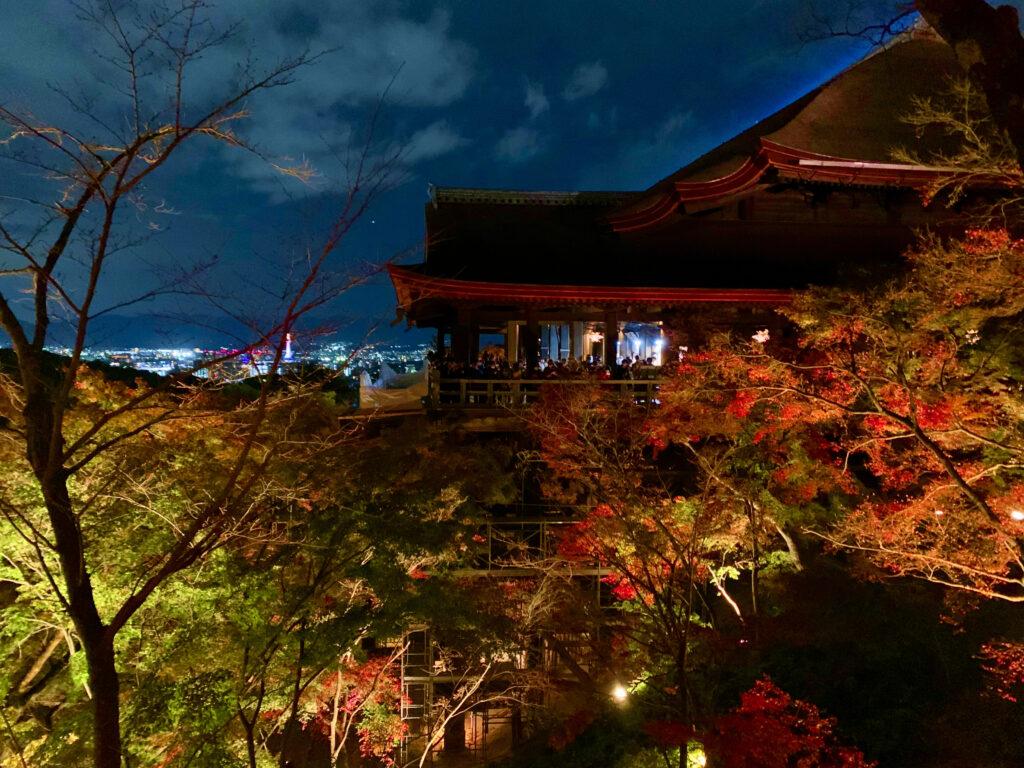 清水寺・阿弥陀堂から撮影した清水の舞台の紅葉とライトアップ
