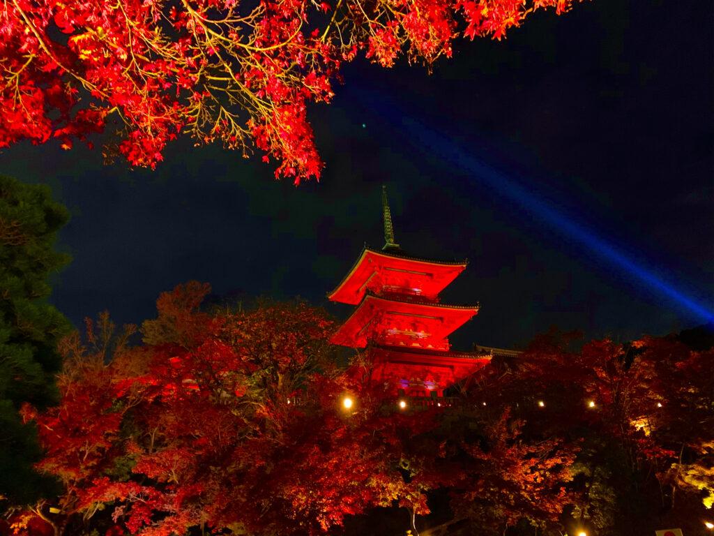 紅葉ライトアップされた清水寺