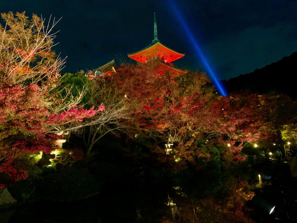五重塔のライトアップと紅葉