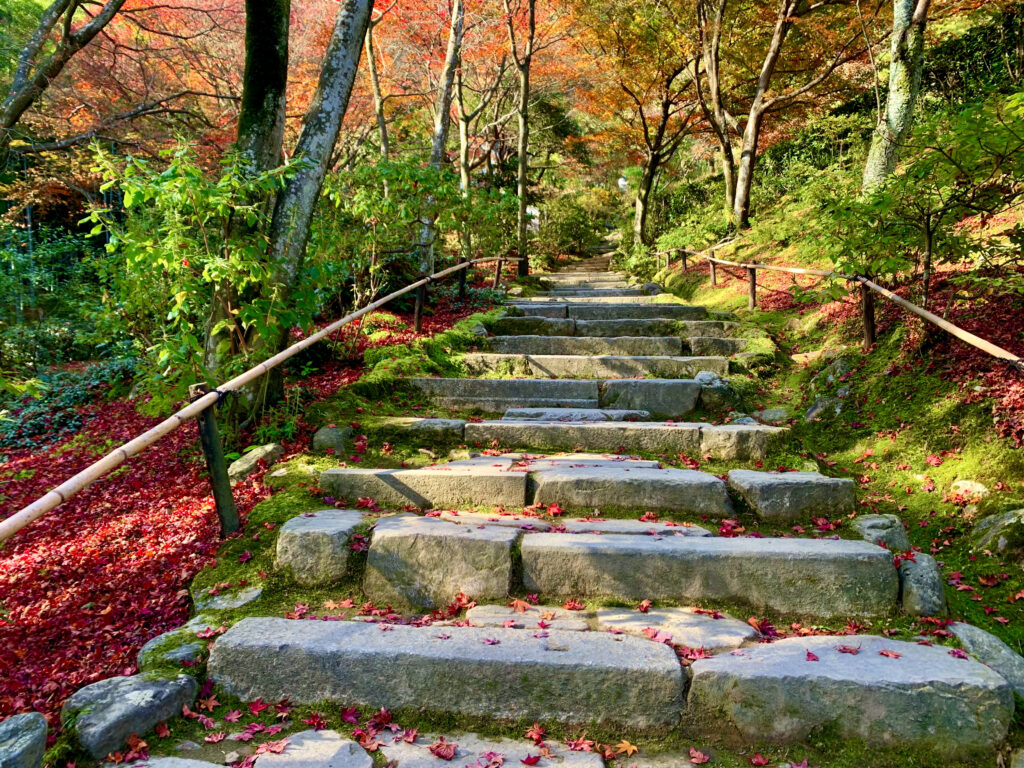 石畳の階段と敷きもみじ