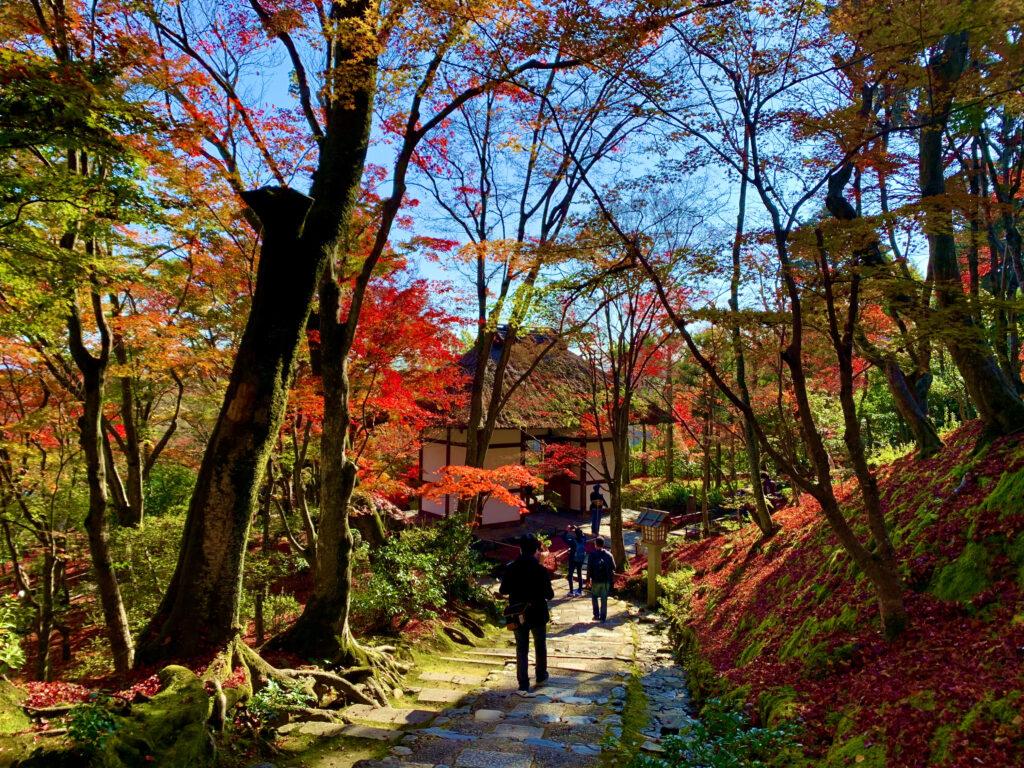 末吉坂の先に見える紅葉と仁王門