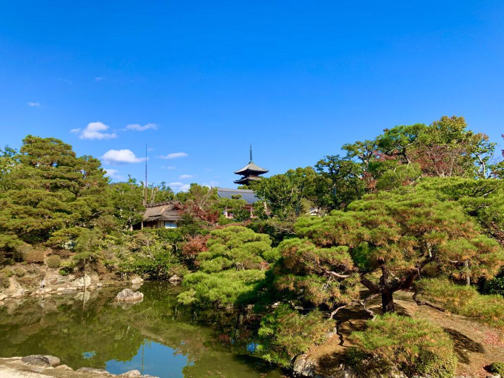 仁和寺の庭園と五重塔