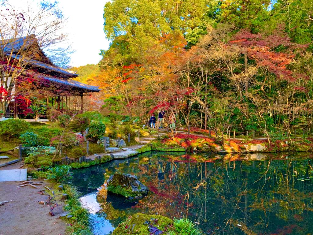 天授庵の庭園と池