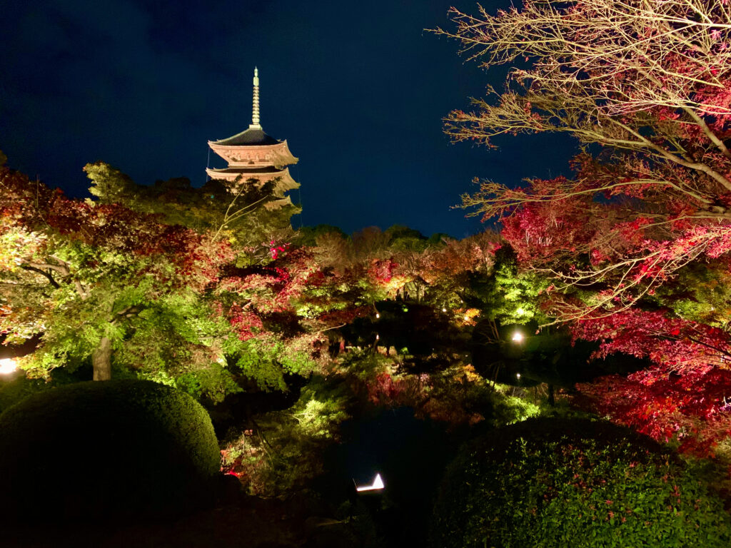 瓢箪池の周囲の紅葉ライトアップと五重塔