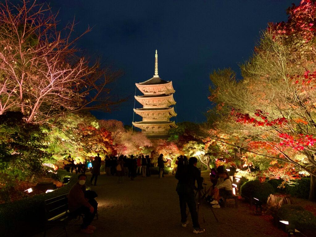 ライトアップされた東寺の夜間拝観