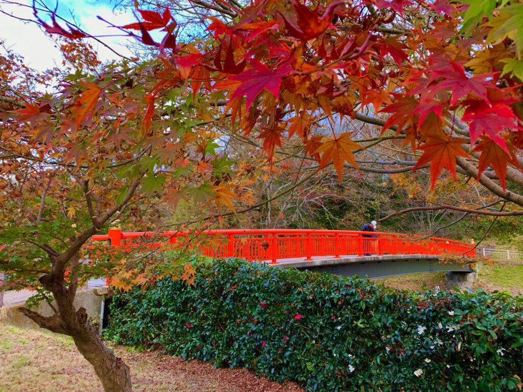 堂山橋と竜田川の紅葉